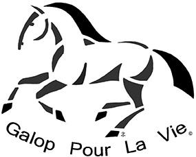 logo OK 2013 recadré