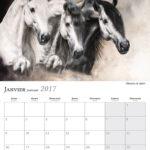 Janvier – January