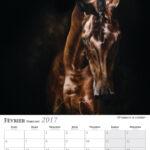 Février – February
